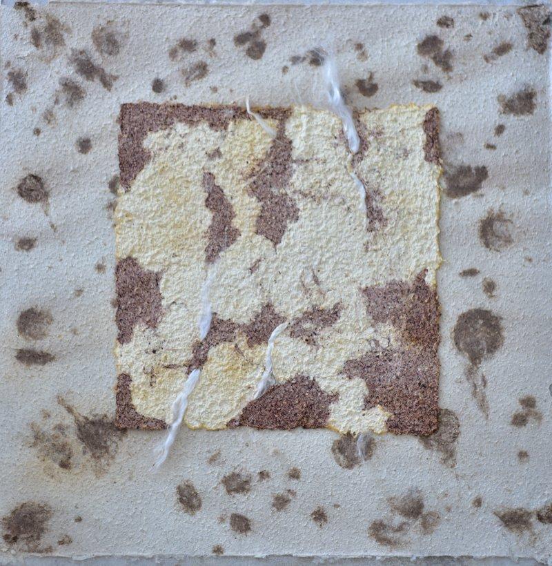 mushroom paper milk coffee agaricus