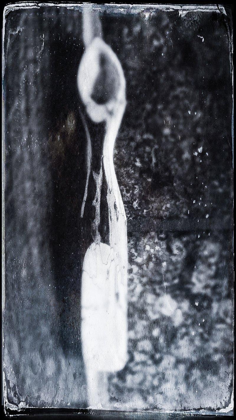 Löffel aus Ahornholz Giraffenholz