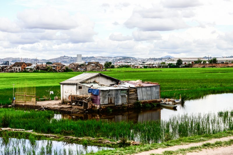 Haus zwischen Reisfelder Moramanga