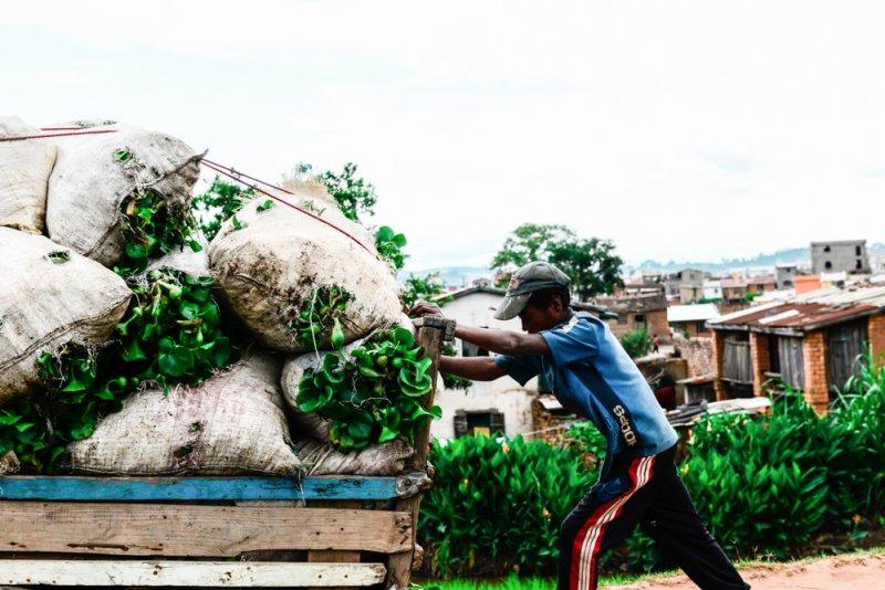 Bauer Madagaskar