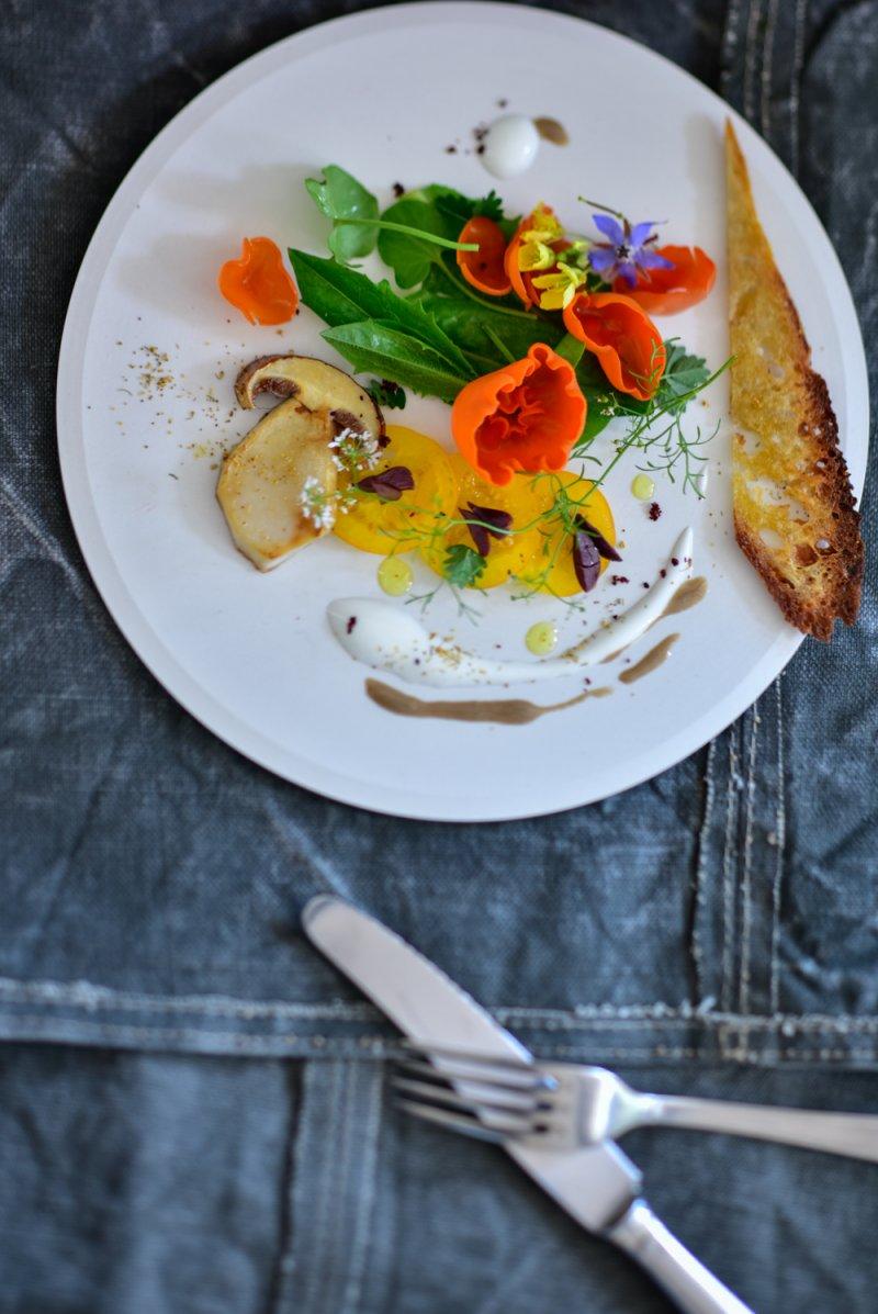 Wildkräuter Salat mit Orangebecherling aleuria aurantia, Semmelgelber Schleimkopf Cortinarius varius